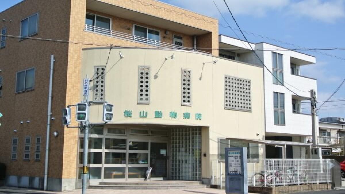 桜山動物病院(トリミング)