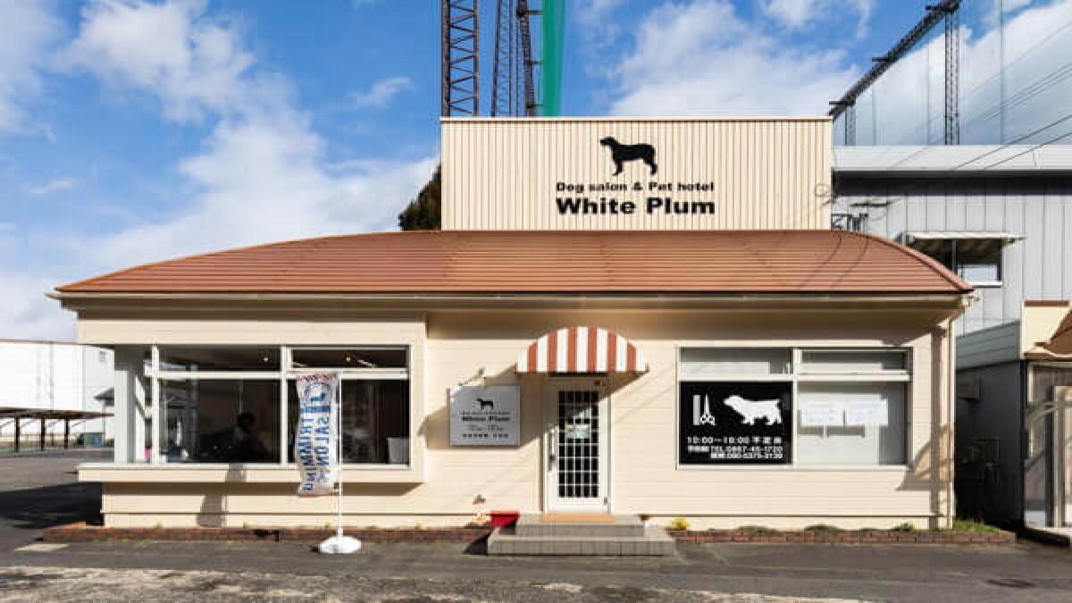 ドッグサロン White Plum
