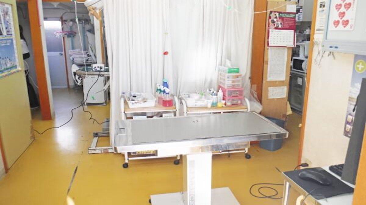 本間獣医科医院藤枝中央病院