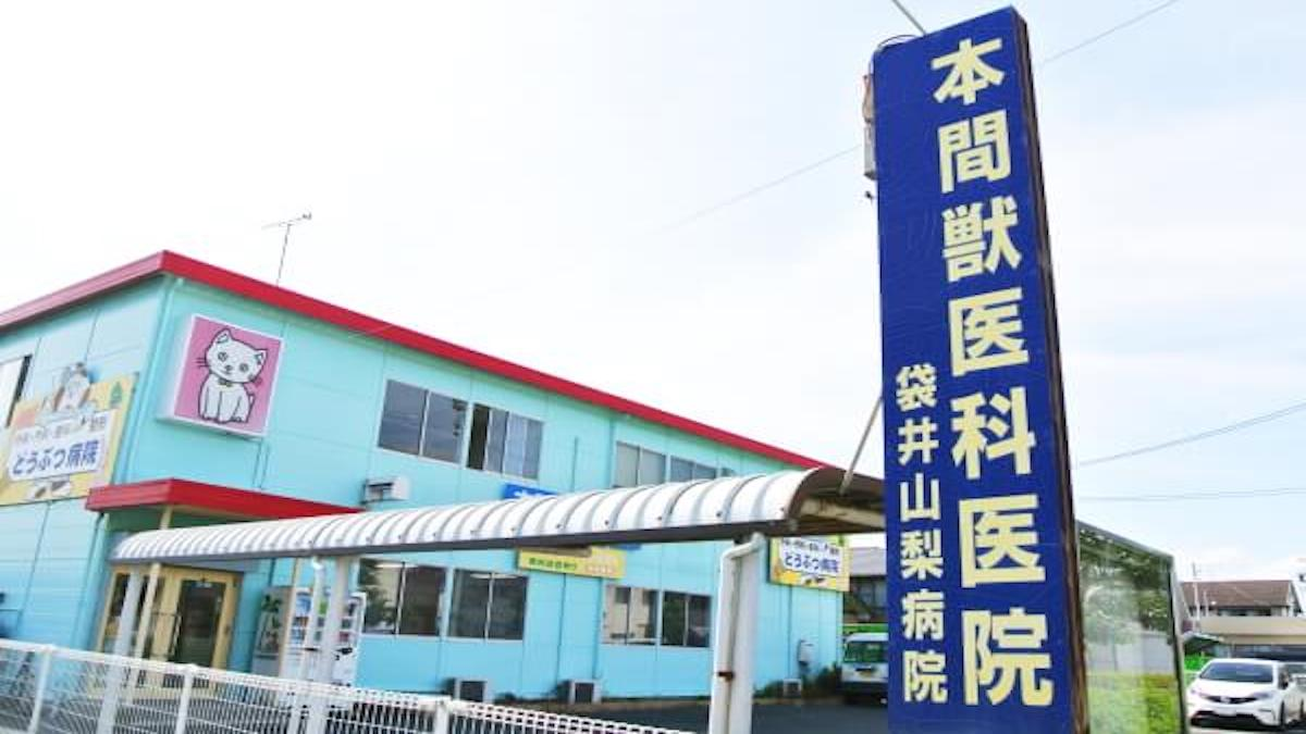 本間獣医科医院/袋井山梨病院(トリミング)