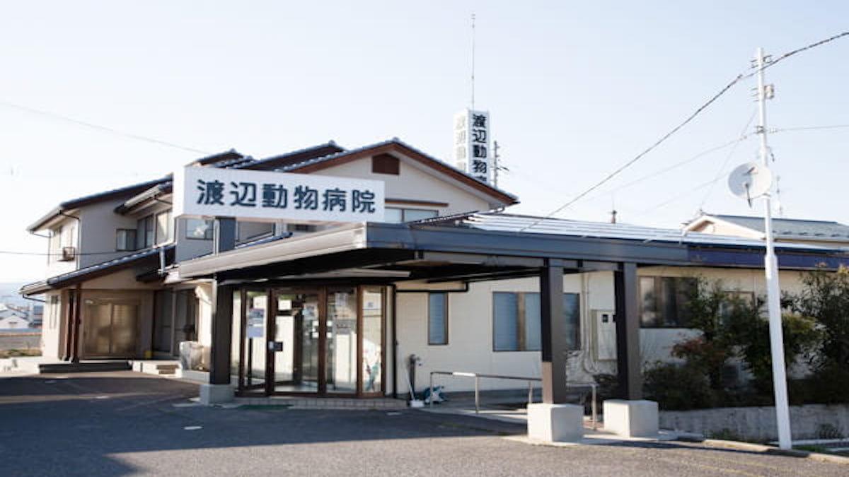 渡辺動物病院(トリミング)