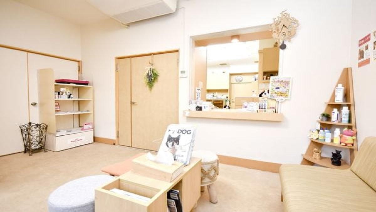 夏目獣医科病院