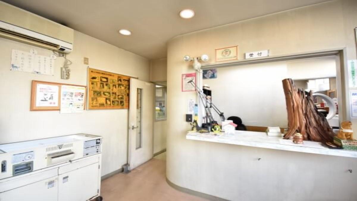 あやべ動物病院