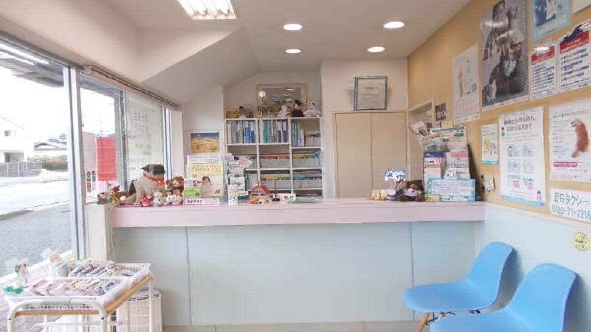 富士見台動物病院