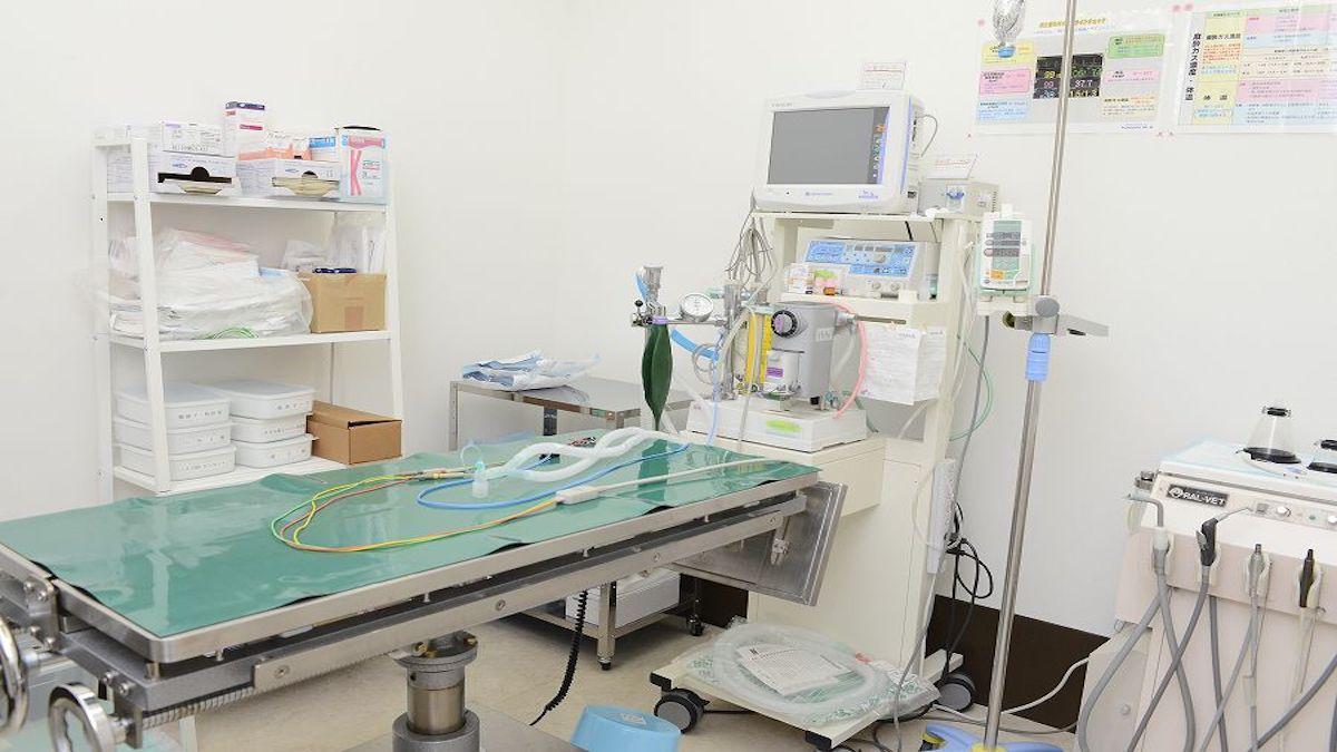 もへい動物病院