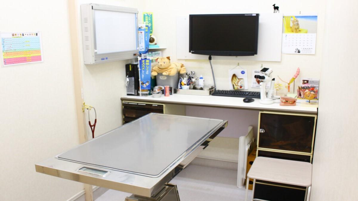 七里動物病院