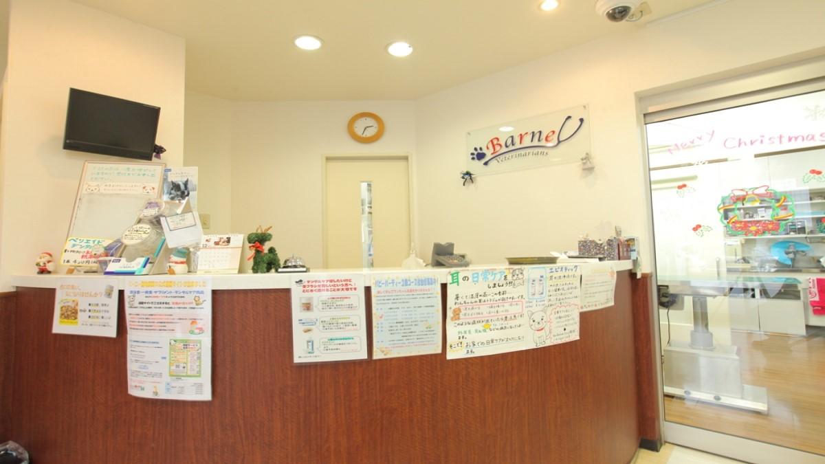 バーニー動物病院