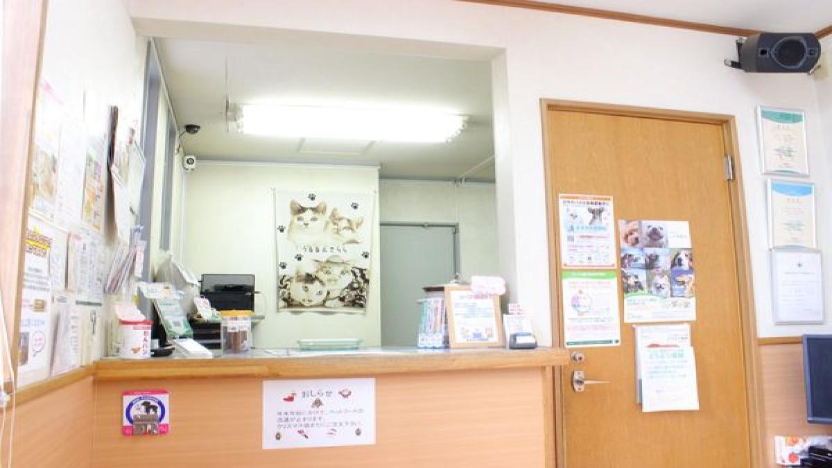 ますみ犬猫病院