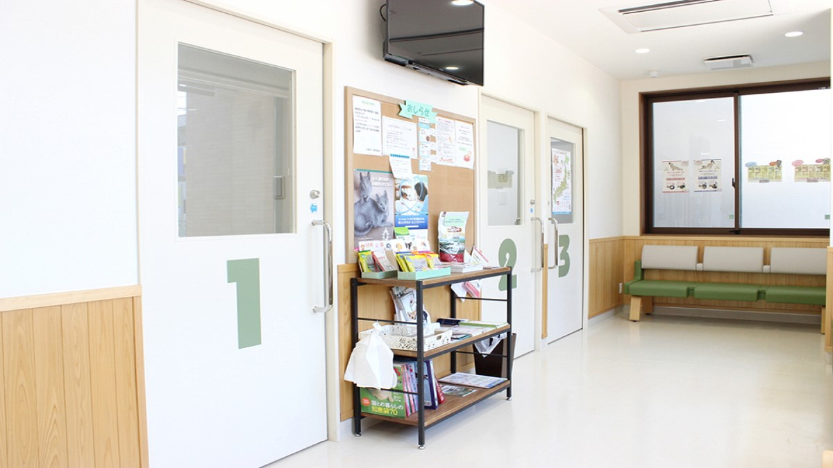 上福岡OZ動物病院