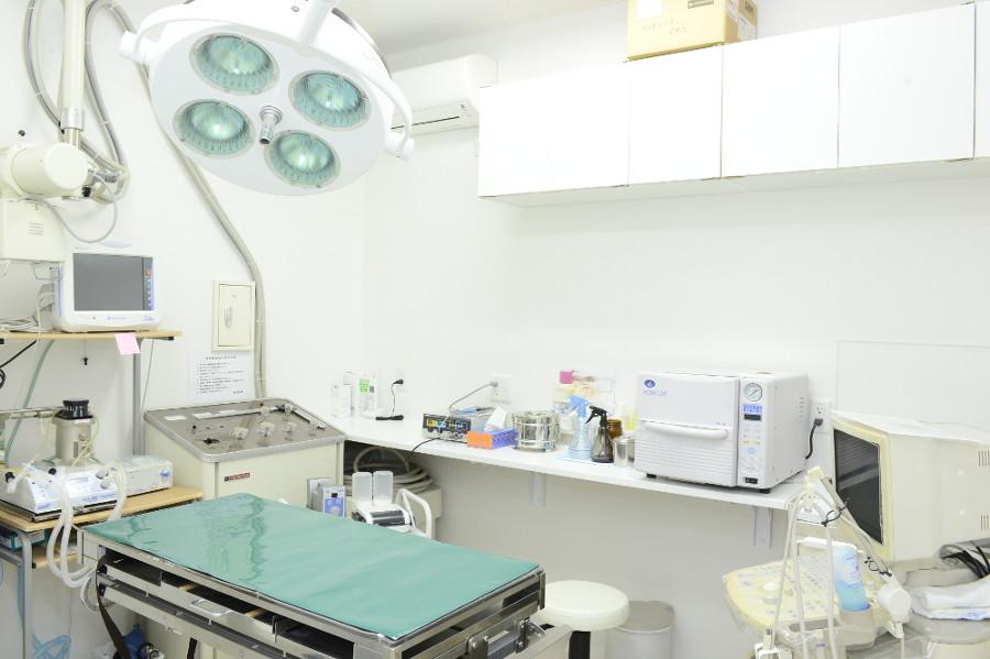 リーフ動物病院