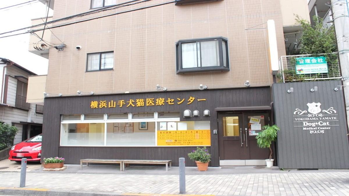 横浜山手犬猫医療センター