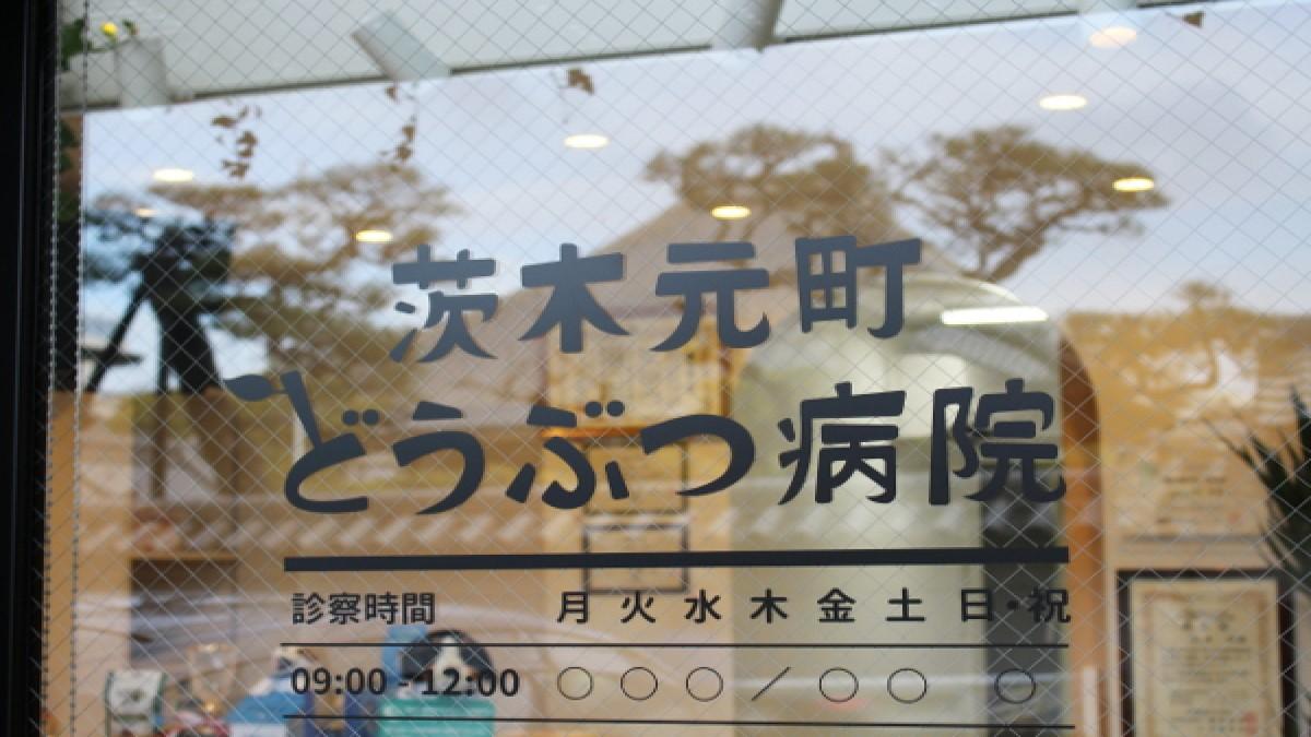 茨木元町どうぶつ病院