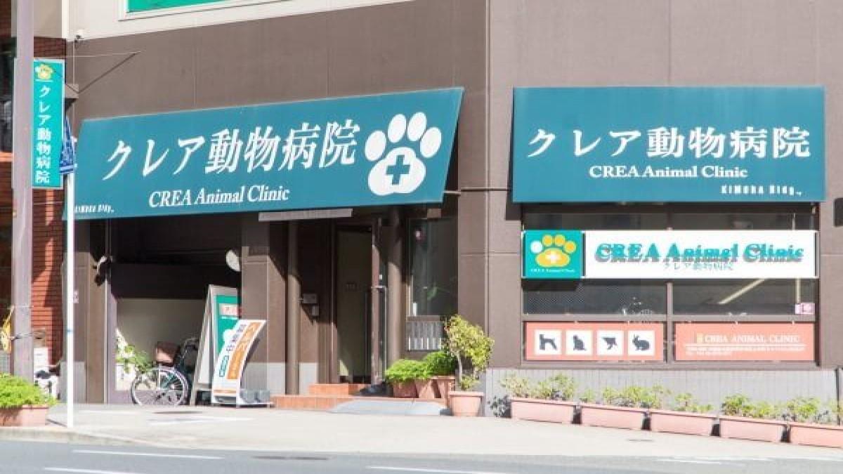 クレア動物病院