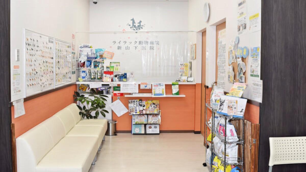 ライラック動物病院