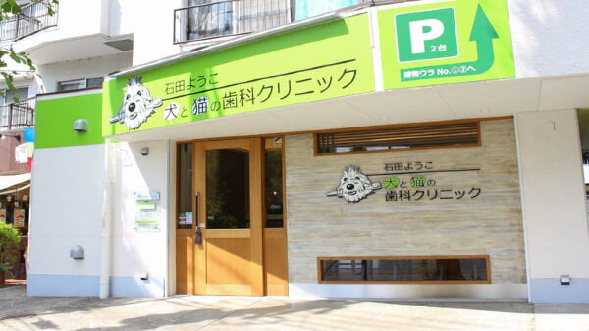石田ようこ犬と猫の歯科クリニック