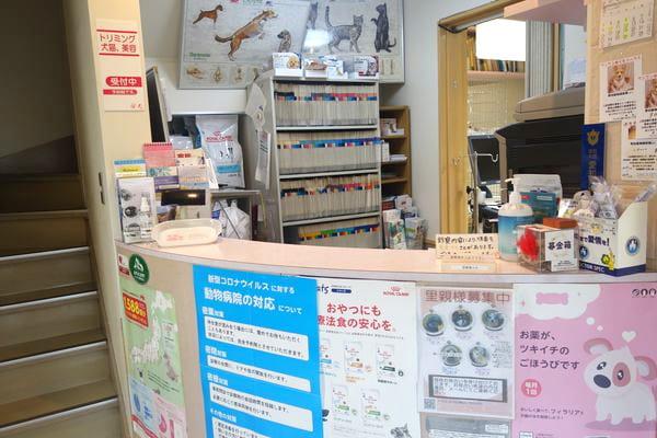 野田動物病院