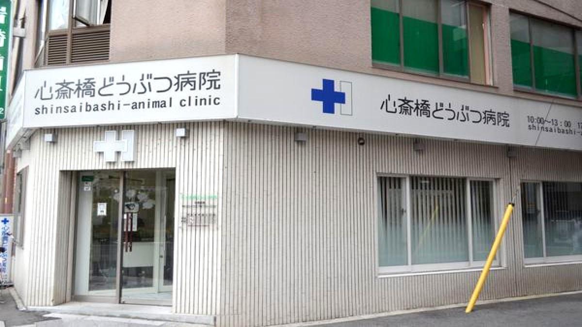 心斎橋どうぶつ病院