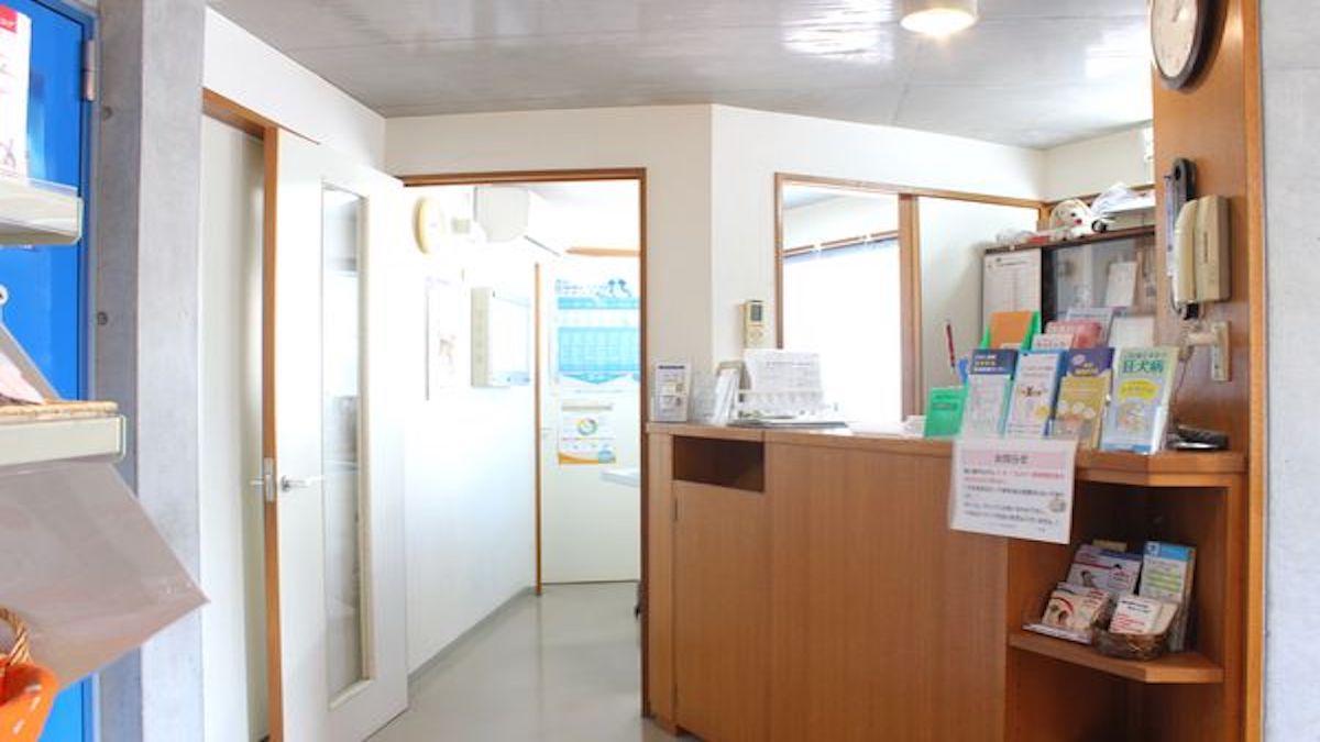 アルファ動物病院