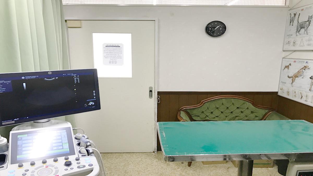 ふじわら動物病院