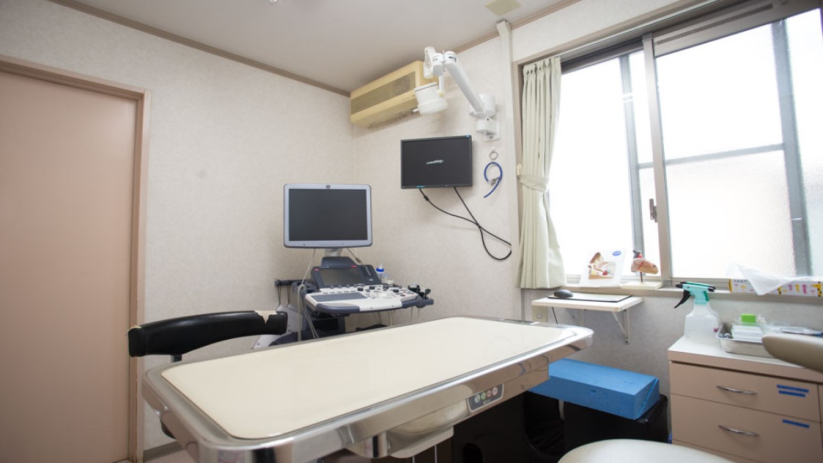 ムカイ動物病院