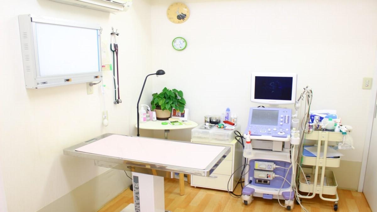 モナ動物病院