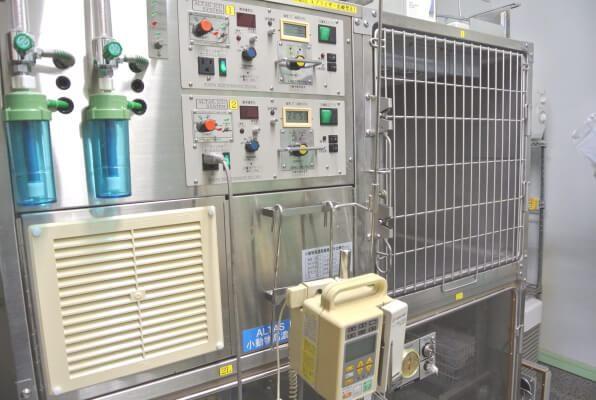 にしび動物病院