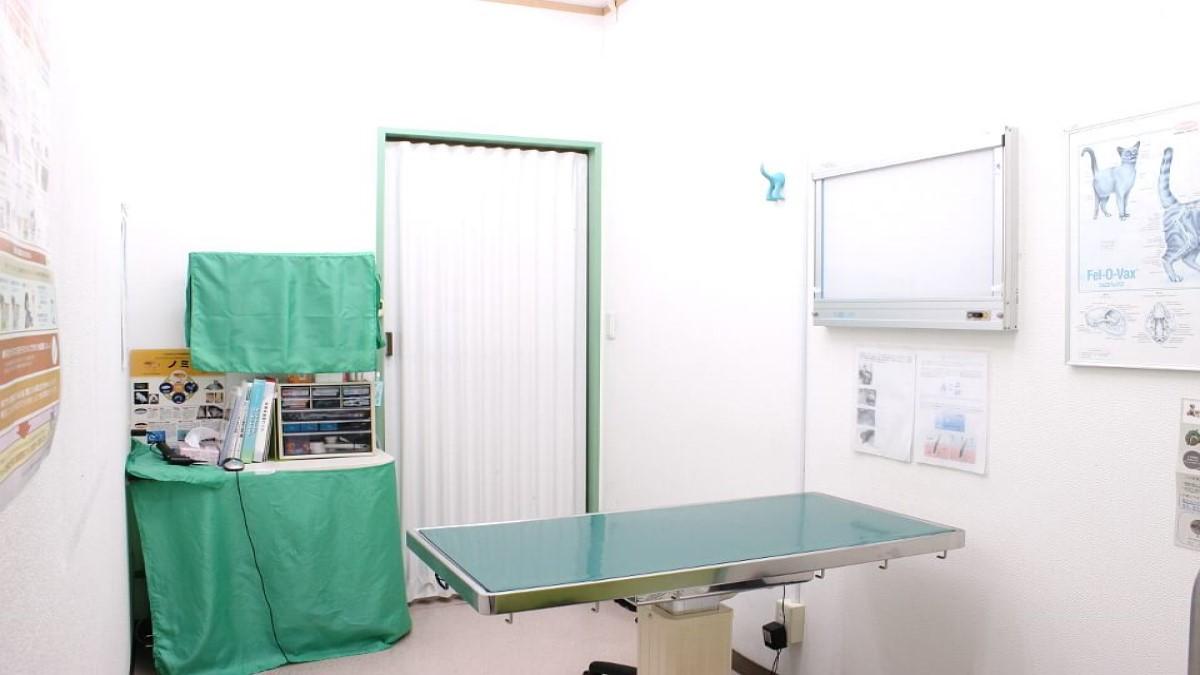 幕張どうぶつ病院