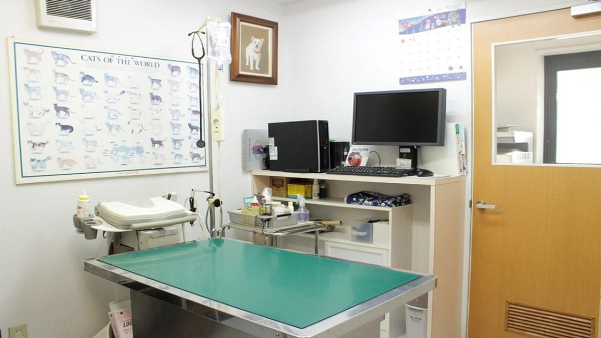 大澤獣医科医院