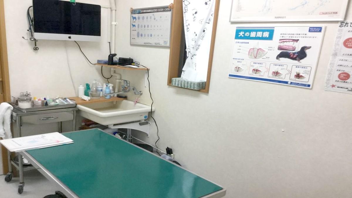 多摩獣医科病院