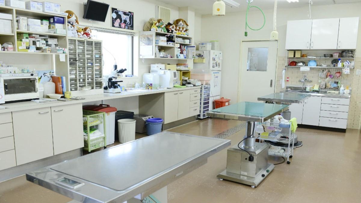 矢野動物病院