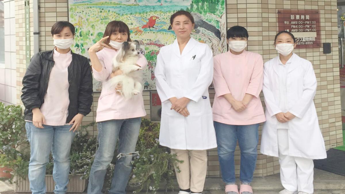 フレックス動物病院