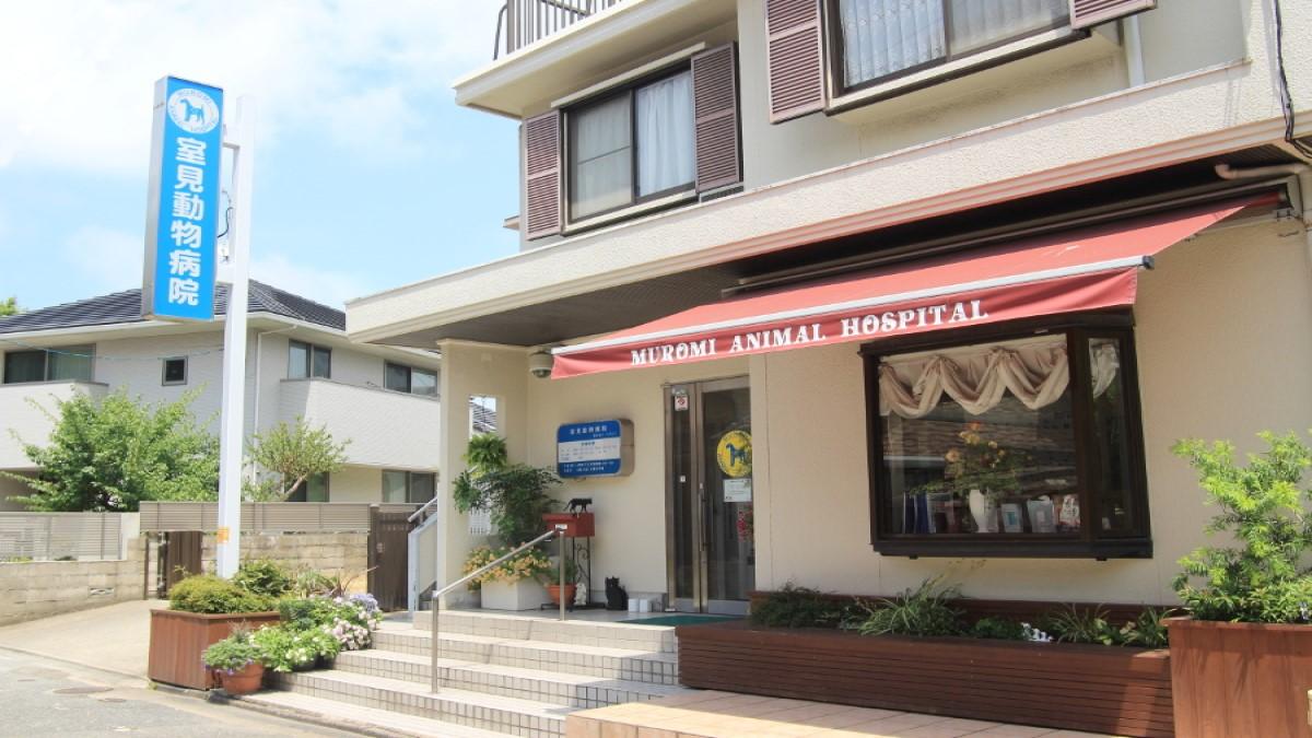 室見動物病院