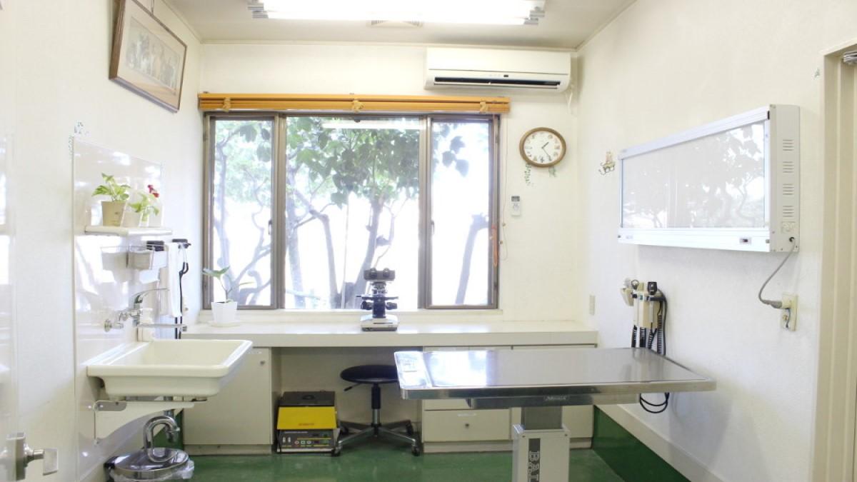 本庄犬猫病院