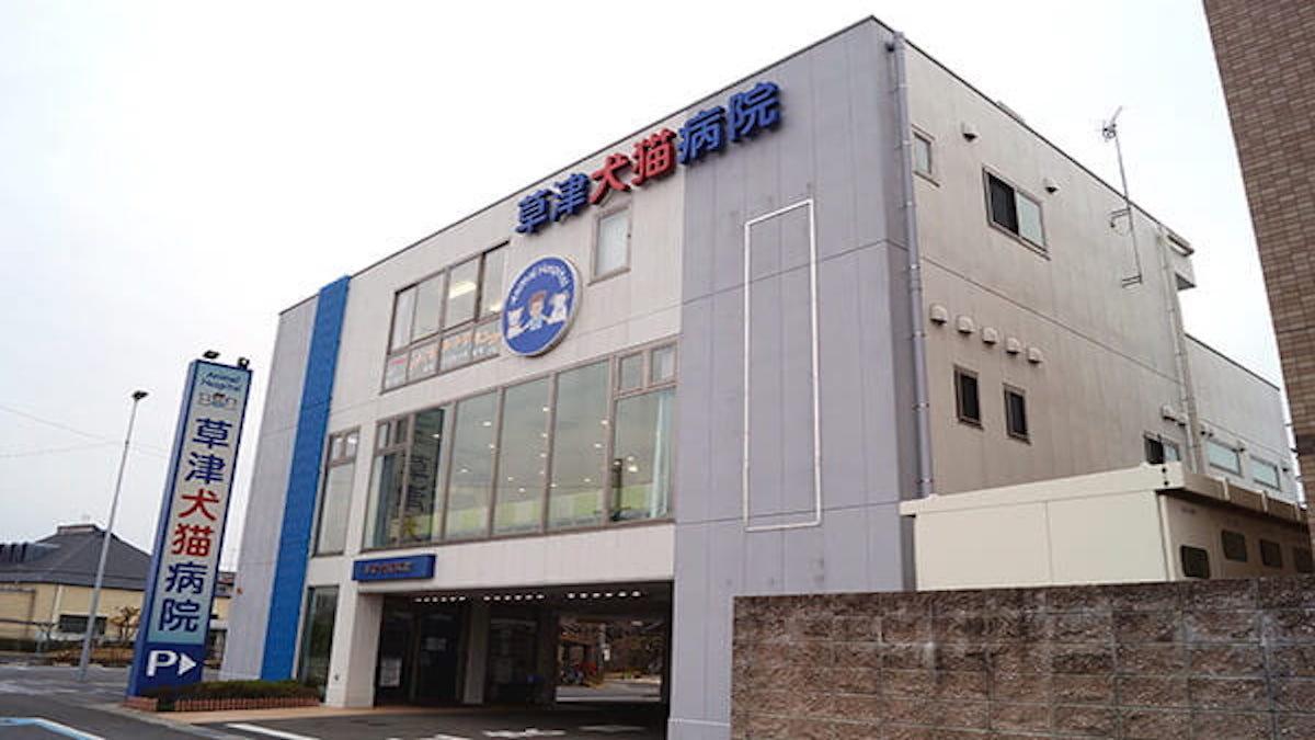 草津犬猫病院(トリミング)