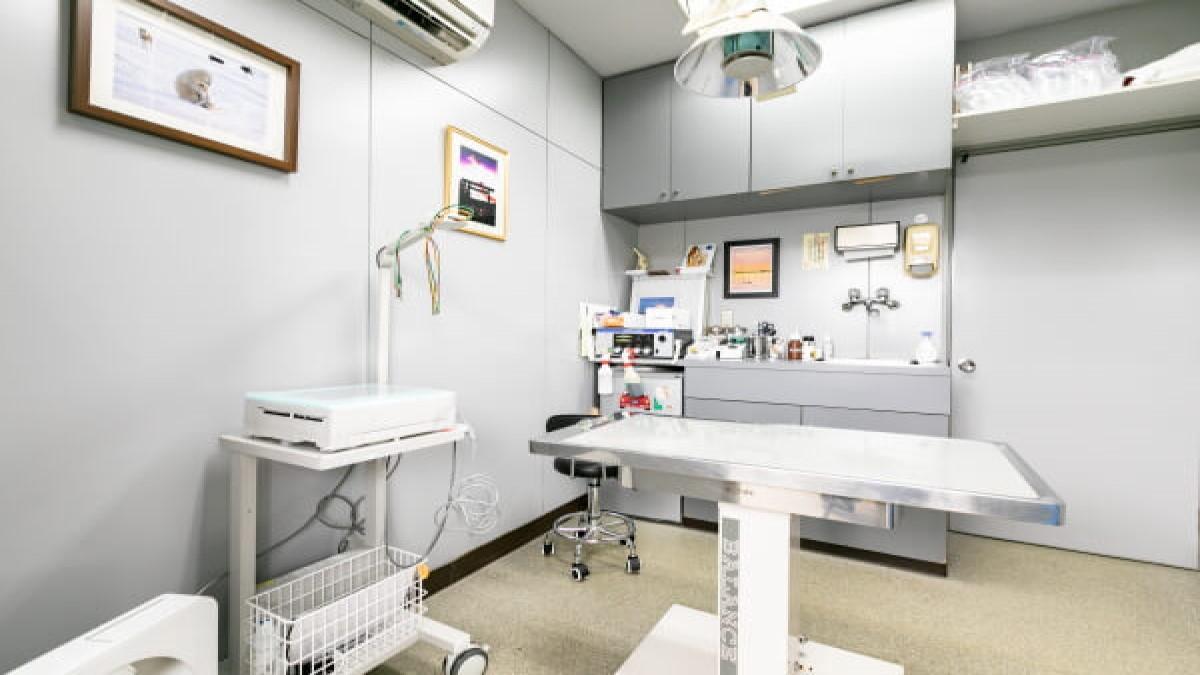 石田イヌネコ病院