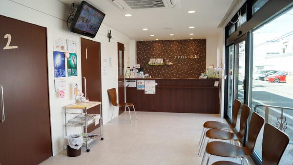 レオ動物病院