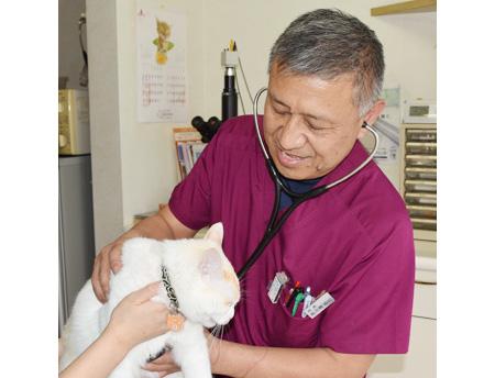 さくま動物病院院長写真
