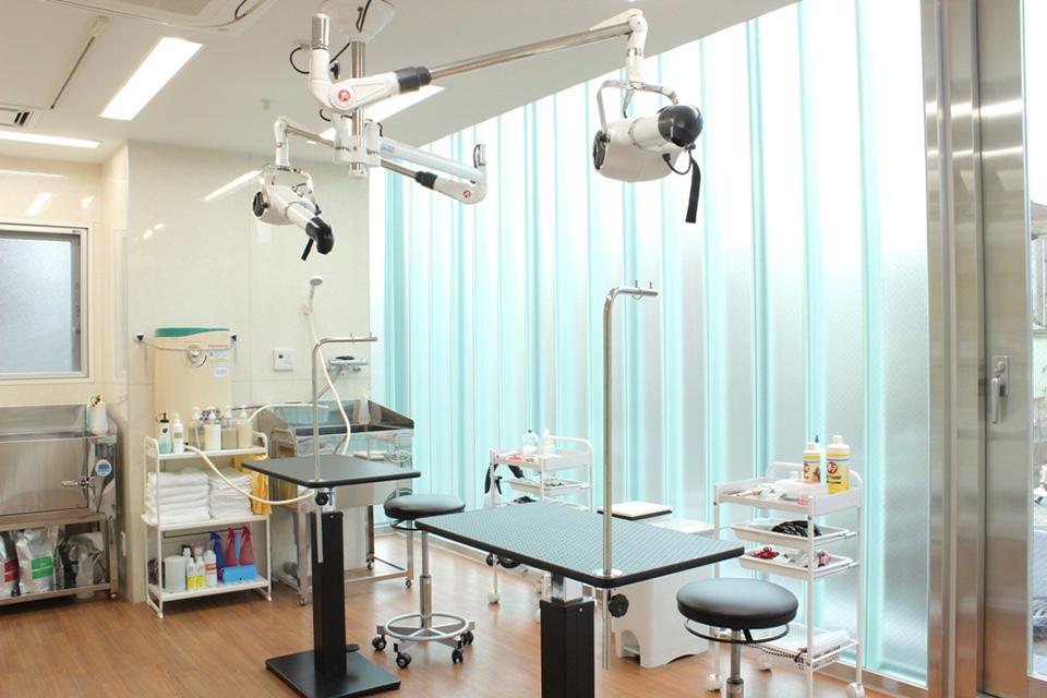 荻窪ツイン動物病院トリミング写真
