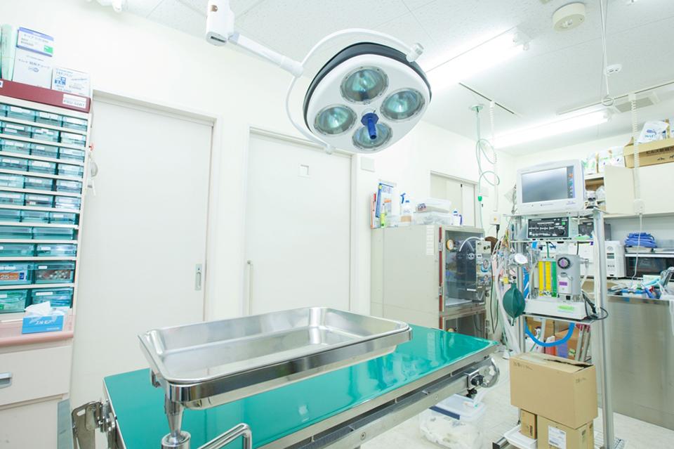 花咲く動物病院