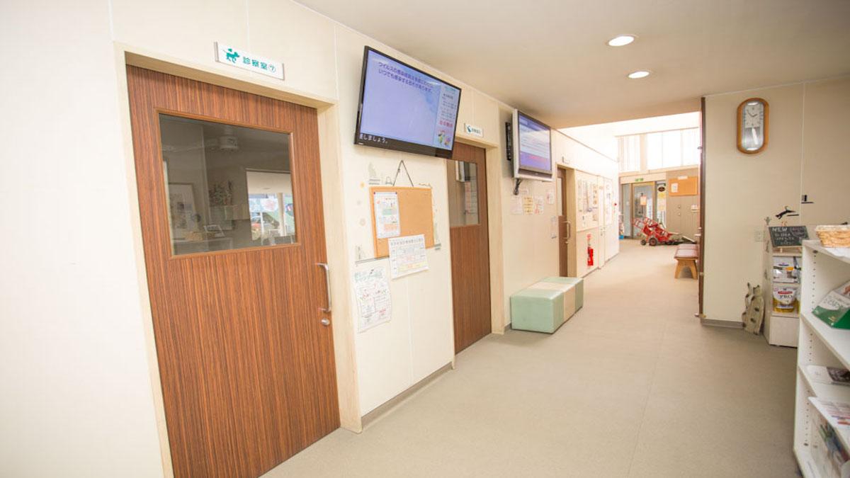 ノア動物病院 城東センター病院
