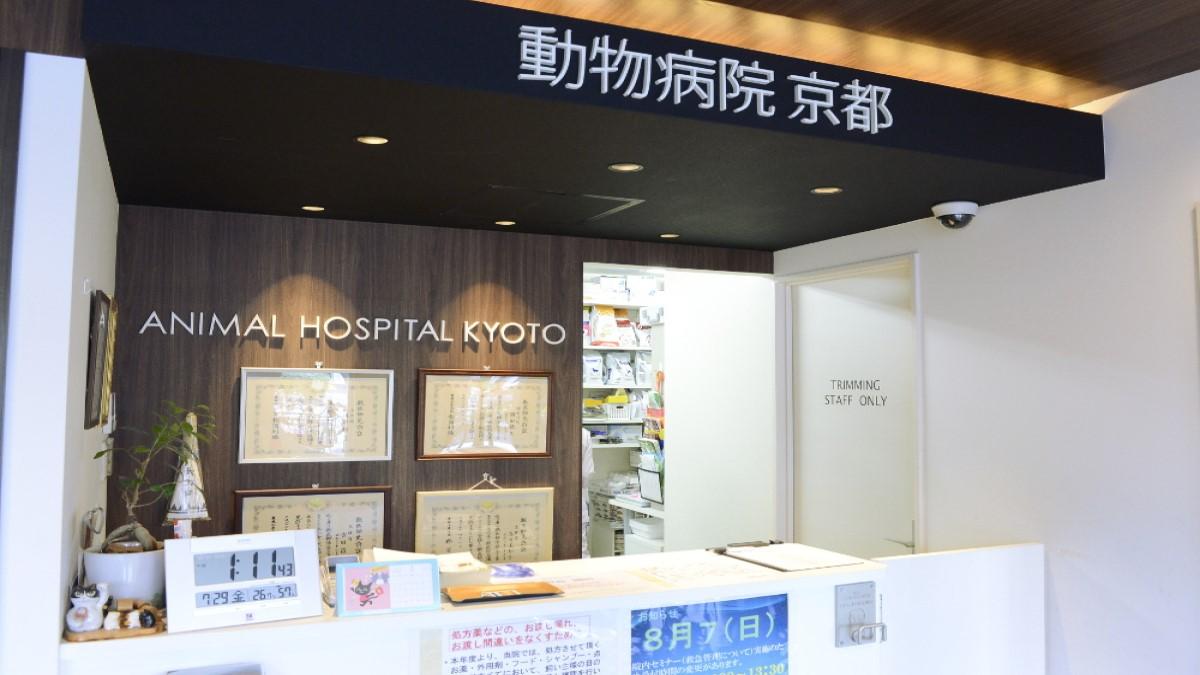 動物病院京都