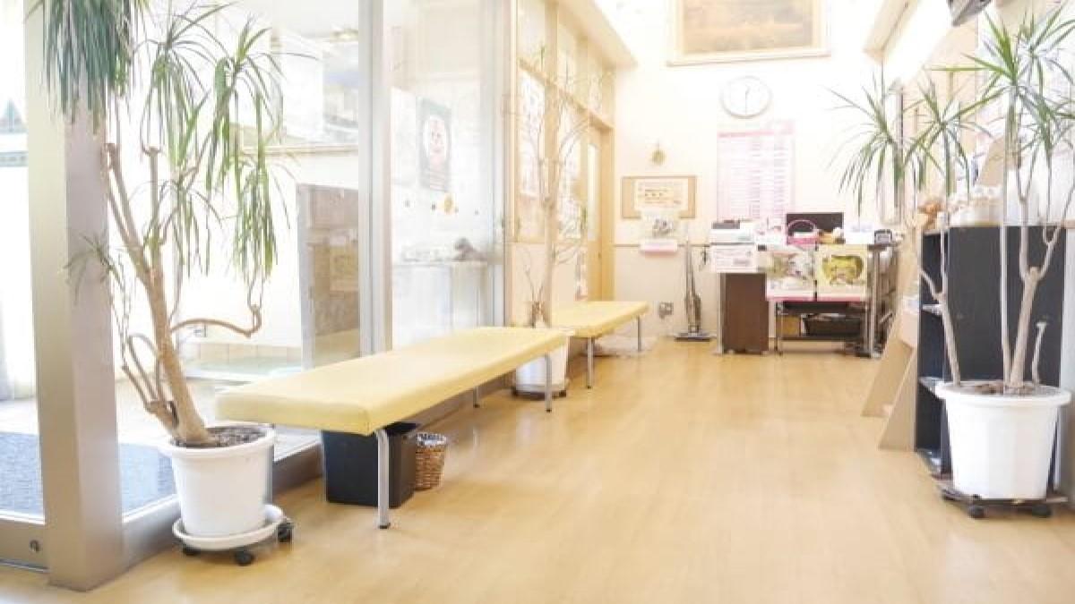 姫路動物病院