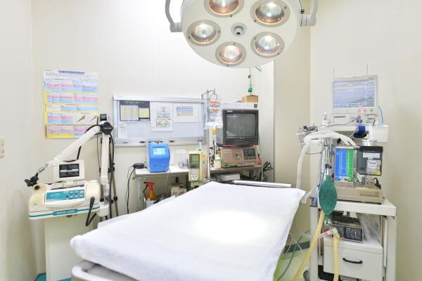 ルナ動物病院