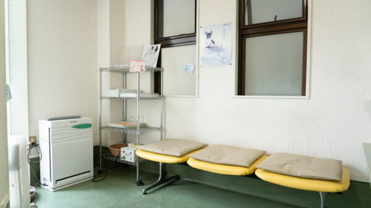 オカダ動物病院