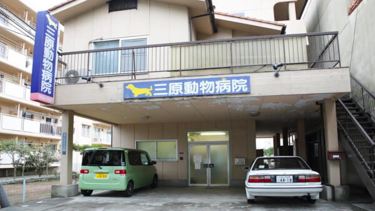 三原動物病院
