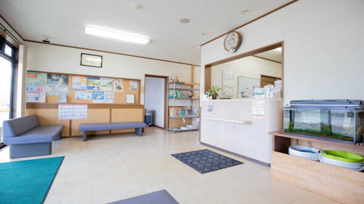 秋田動物病院