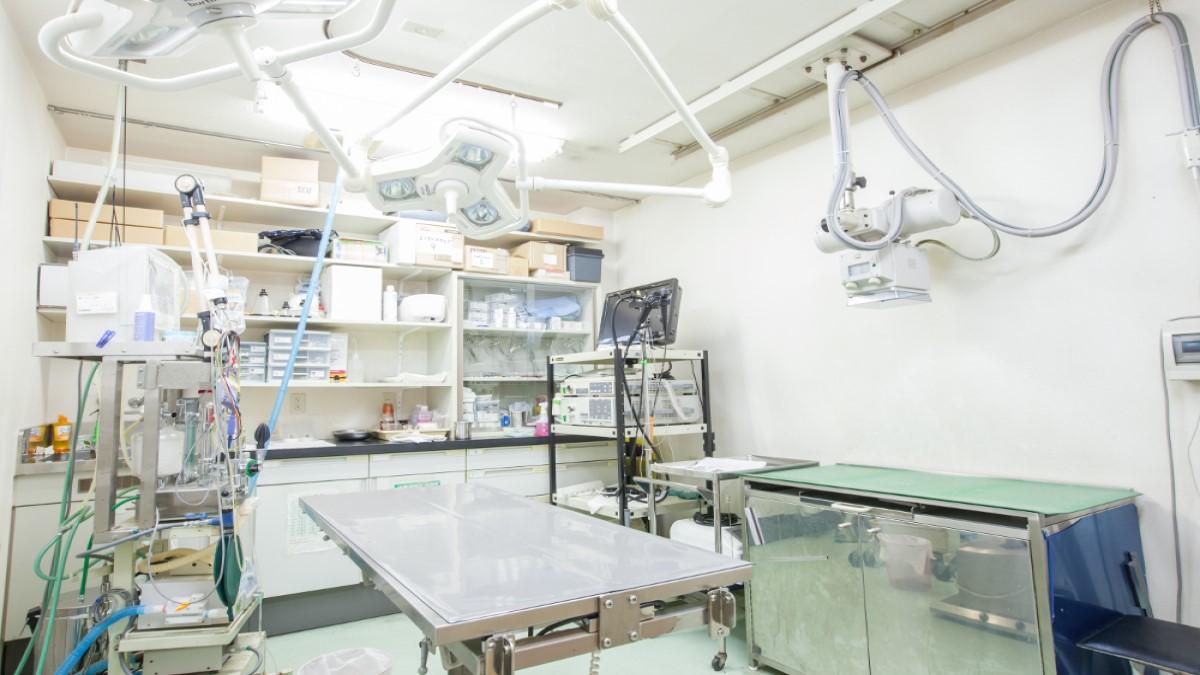 学が丘動物病院