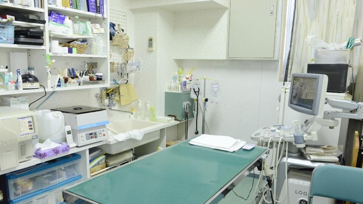 キャラメル動物病院