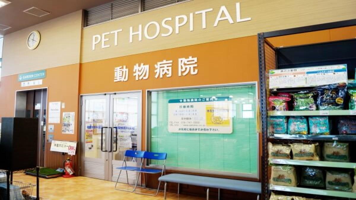 本間獣医科医院 カインズひよどり台病院