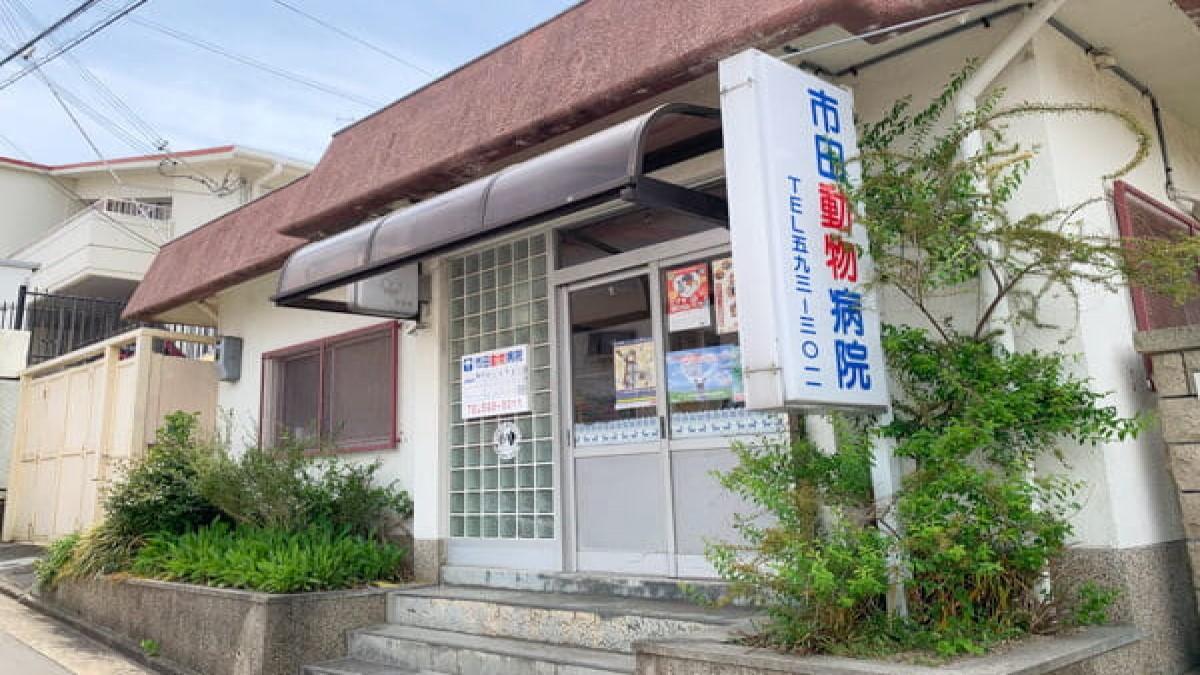 市田動物病院